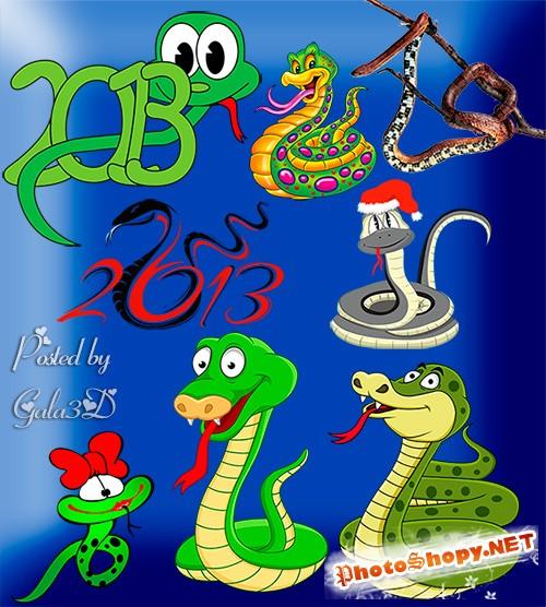 Клипарт змей на прозрачном фоне