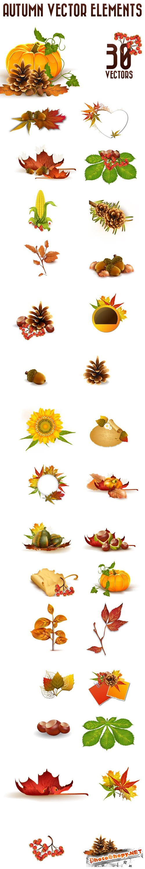 Designtnt - Vector Autumn Elements Set 1
