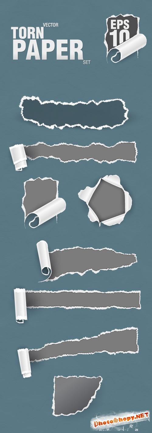 Designtnt - Vector Torn Paper