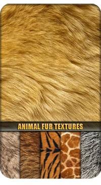 Текстуры шкуры экзотических животных