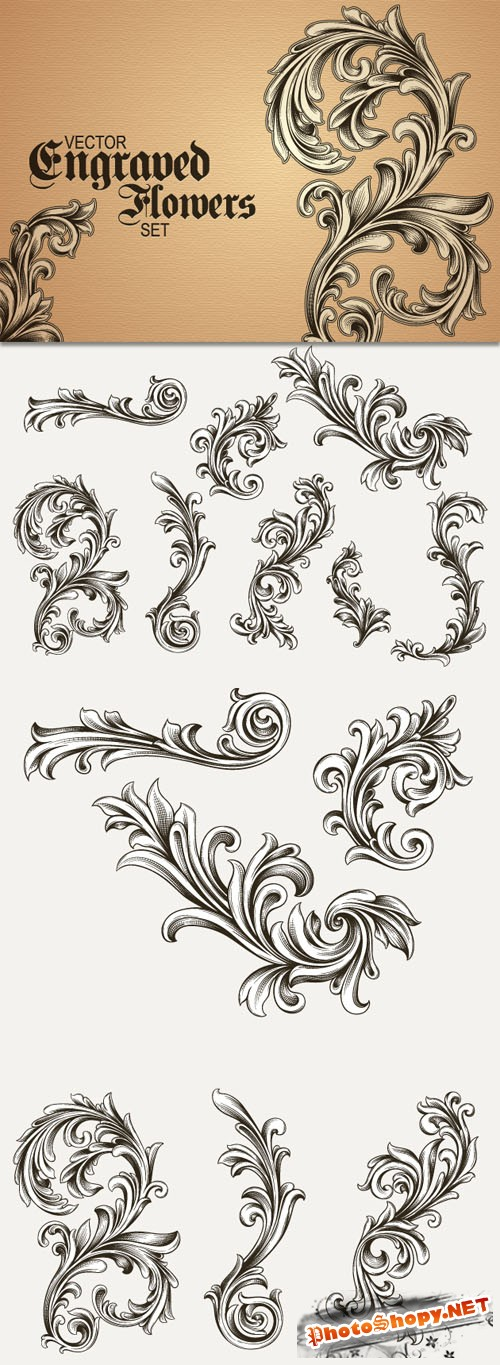 Designtnt - Vector Engraved Floral Elements