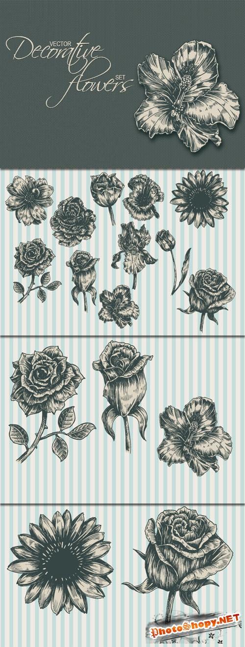Designtnt - Decorative Flowers Vector Set 1