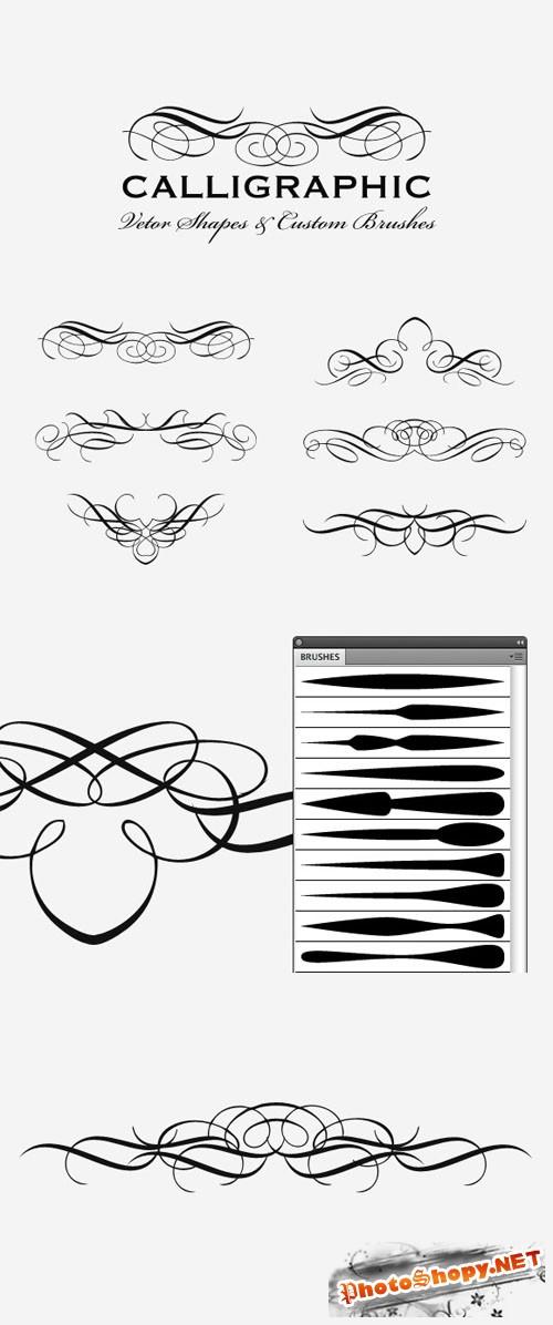 WeGraphics - Vector Calligraphic Multi-Pack