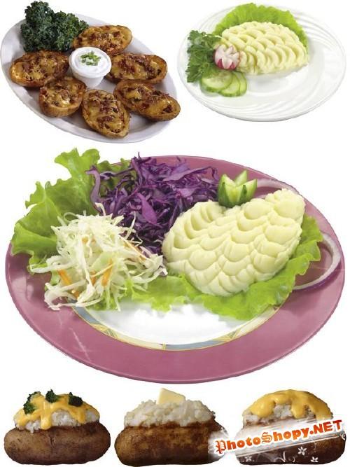 Картофельное пюре и запеченый картофель