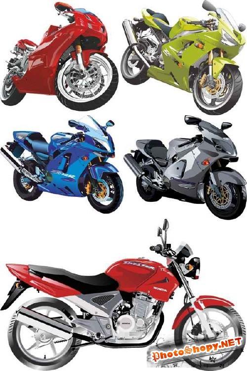 Мотоциклы, мопеды и скутеры - векторный сток