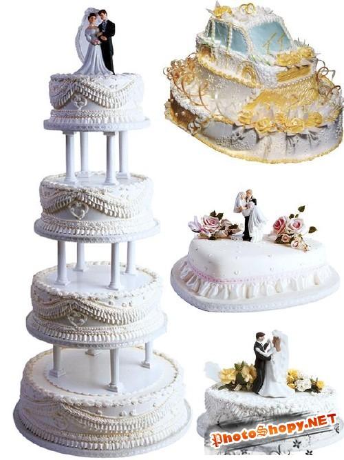 Фотосток: Свадебный торт