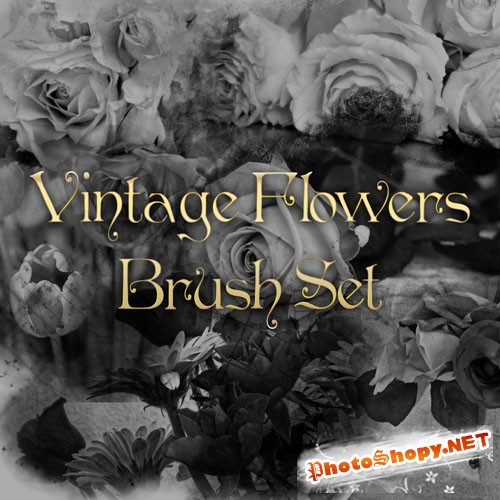 Vintage Flowers Photoshop Brushes