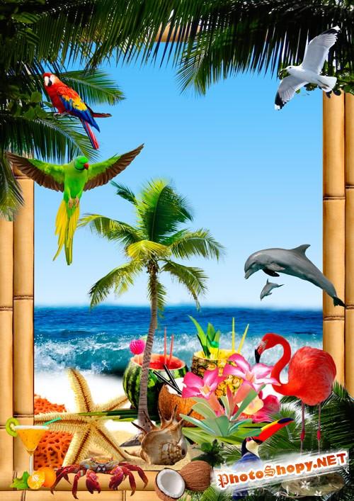 Скрап набор  - Отпуск в тропиках