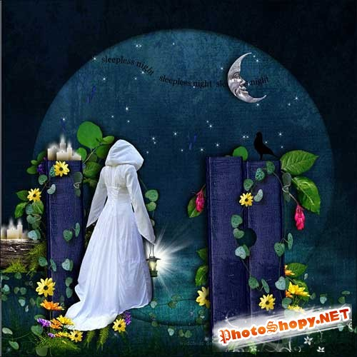 Интересный скрап-набор - Черничная ночь