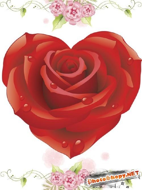 Фотосток: рисованные розы (часть первая)