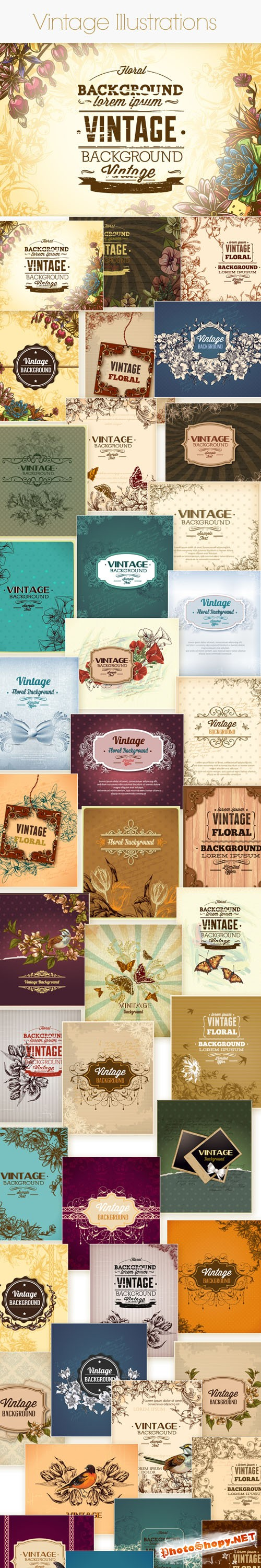 50 Vintage Floral Vector Illustrations