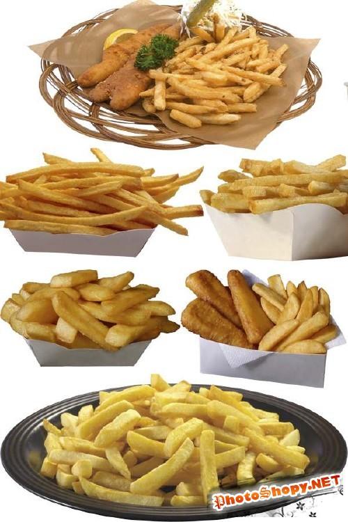 Фотосток: картофель фри