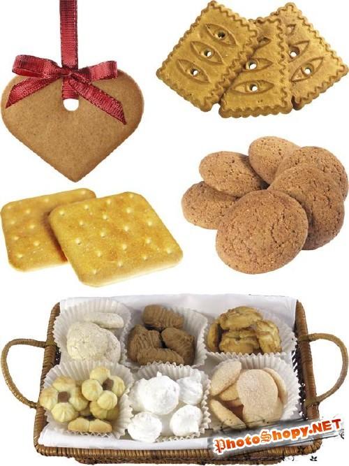 Фотосток: печенье и крекеры