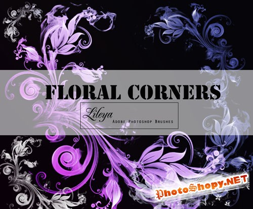 Floral Corners Photoshop Brushes