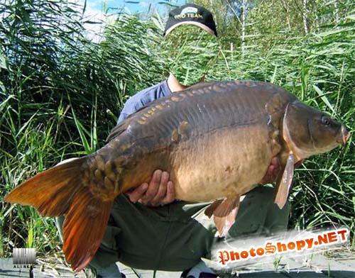 Шаблон для фотошоп - Вот это рыбалка брат...