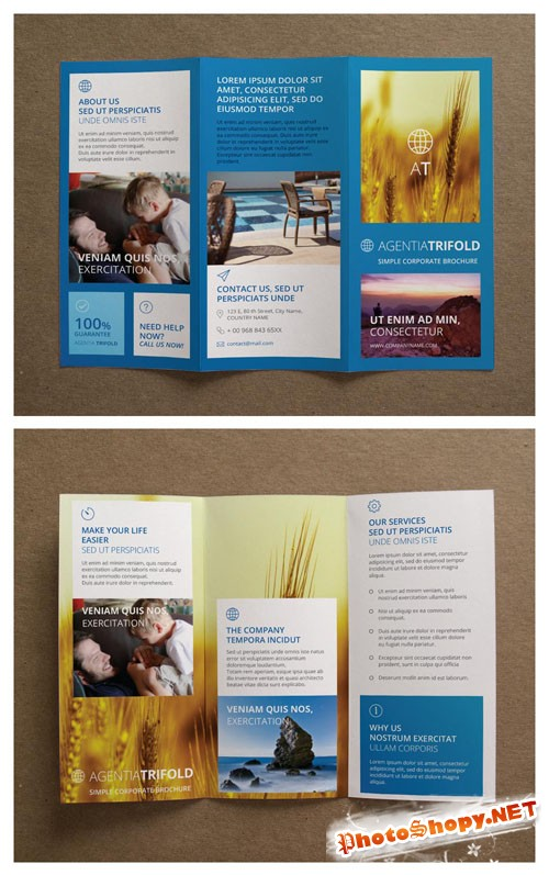 Pixeden - Agentia Tri Fold Brochure Template