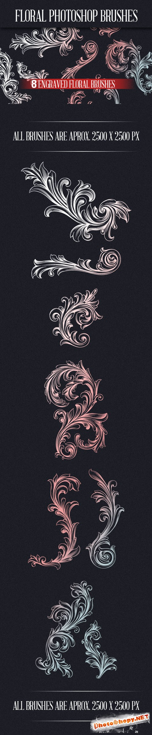Designtnt - Engraved Floral Photoshop Brushes