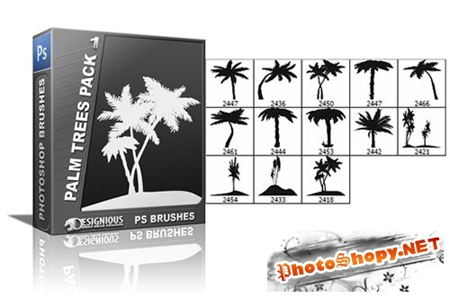 13 Palm Trees Photoshop Brushes Pack 1