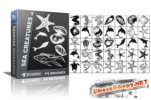 35 Sea Creatures Photoshop Brushes Pack 1