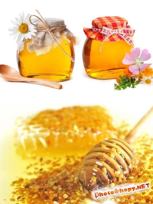 Фотосток: сладкий мед