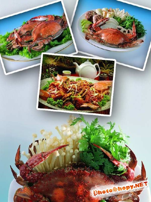 Морепродукты: Блюда из крабов
