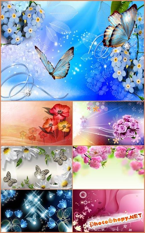 Красивые фоны - Нежные цветы